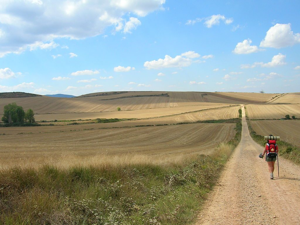Why walk? the camino de santiago then and now   lisa deam christian